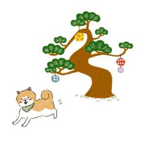 武家屋敷にいる秋田犬、武家丸くん。